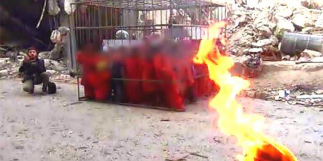 داعش ۱۵ نفر عراقی را در آتش سوزاند!!!!