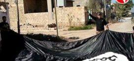 داعش پرچم های خود را پاین آورد!