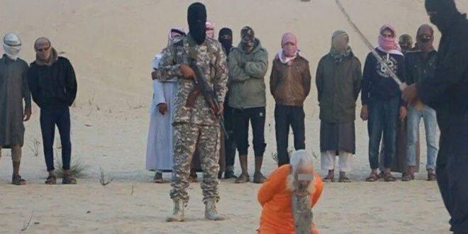داعش شیخ صوفی ۹۸ ساله را در مصر گردن زد+تصاویر
